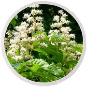 Horse Chestnut Blossoms Round Beach Towel