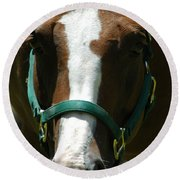 Horse Face Round Beach Towel