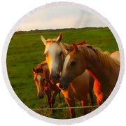 Horse Family Soft N Sweet Round Beach Towel