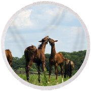 Horse Foul Play II Round Beach Towel