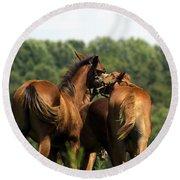 Horse Foul Play IIi Round Beach Towel