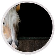 Horse In The Stable Round Beach Towel