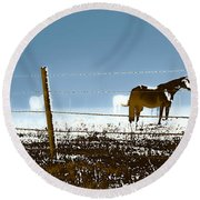 Horse Pasture Revdkblue Round Beach Towel