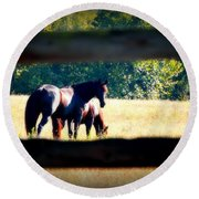 Horse Photography Round Beach Towel