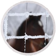 Horse Viewed Through Frost Covered Wire Fence Round Beach Towel