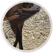 Horse With No Name V4 Round Beach Towel