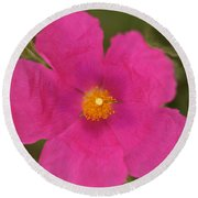 Hot Pink Round Beach Towel