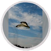 Hovering Round Beach Towel