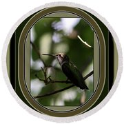 Hummingbird - Card - Glint Of The Eye Round Beach Towel