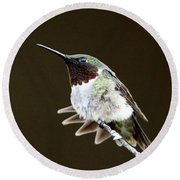 Hummingbird - Wide Tail Round Beach Towel