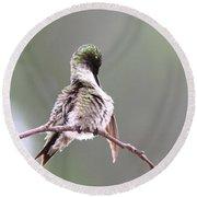 Hummingbird - Cleaning Up Round Beach Towel