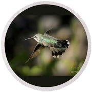 Hummingbird Fly By Round Beach Towel