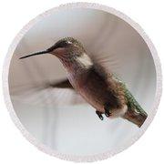 Hummingbird Flying In Mid Air  Round Beach Towel