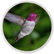 Hummingbird Glory Round Beach Towel