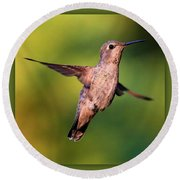 Hummingbird Hello Round Beach Towel