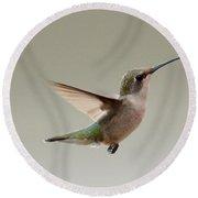 Hummingbird In Flight Round Beach Towel