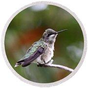 Hummingbird - Little Friend Round Beach Towel