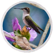 Hummingbird Picture Pretty Round Beach Towel
