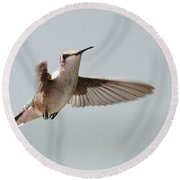 Hummingbird With Tongue Out Round Beach Towel