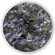 Hundreds - Tree Swallows Round Beach Towel