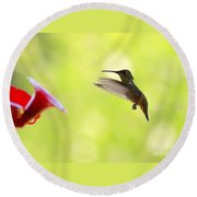 Hungry Hummer Round Beach Towel