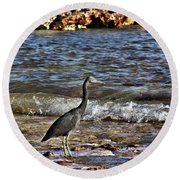 Hunting In The Shallows Round Beach Towel