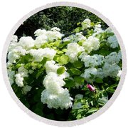 Hydrangeas And A Rose Round Beach Towel