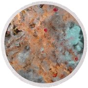 Hydrothermal Vent Tubeworms Round Beach Towel