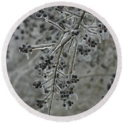 Ice- Coated Hawthorn Branch Round Beach Towel