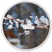 Ice On A Branch Round Beach Towel