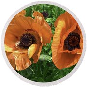 Iceland Poppies Round Beach Towel