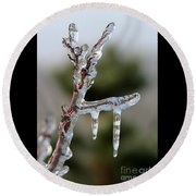 Icy Branch-7529 Round Beach Towel