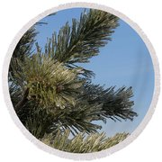 Icy Branch-7673 Round Beach Towel