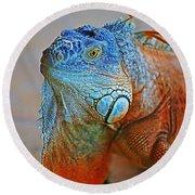 Iguana Close-up Round Beach Towel