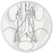 Illustration Of Urinary System Round Beach Towel