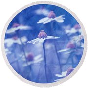 Imagine 06ht01 Round Beach Towel by Variance Collections