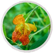 Impatiens Capensis - Orange Spotted Jewelweed Round Beach Towel