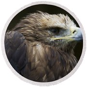 Imperial Eagle 4 Round Beach Towel