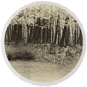 In A Yellow Wood Antique Round Beach Towel
