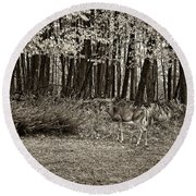 In A Yellow Wood Sepia Round Beach Towel