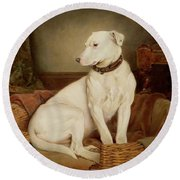 In Disgrace Round Beach Towel by William Woodhouse