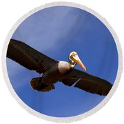 In Flight Pelican Round Beach Towel