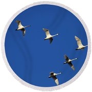 In Formation Round Beach Towel