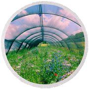 In The Greenhouse Round Beach Towel