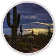 In The Shadow Of The Saguaro  Round Beach Towel