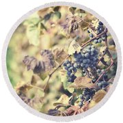 In The Vineyard Round Beach Towel by Lisa Russo