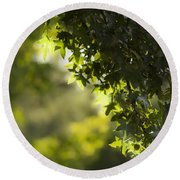 In The Woods Round Beach Towel