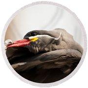 Inca Tern Round Beach Towel