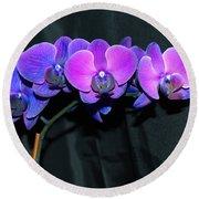 Indigo Mystique Orchids  Round Beach Towel