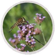 Insect And Flower Round Beach Towel